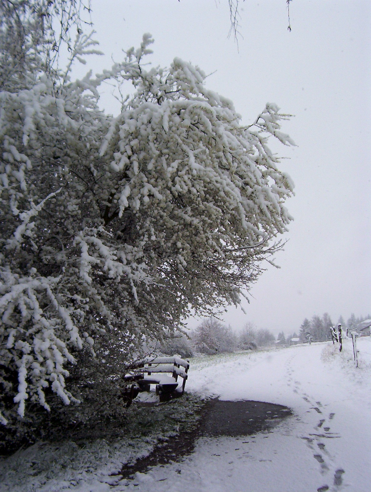Wetter In Fürth Odw